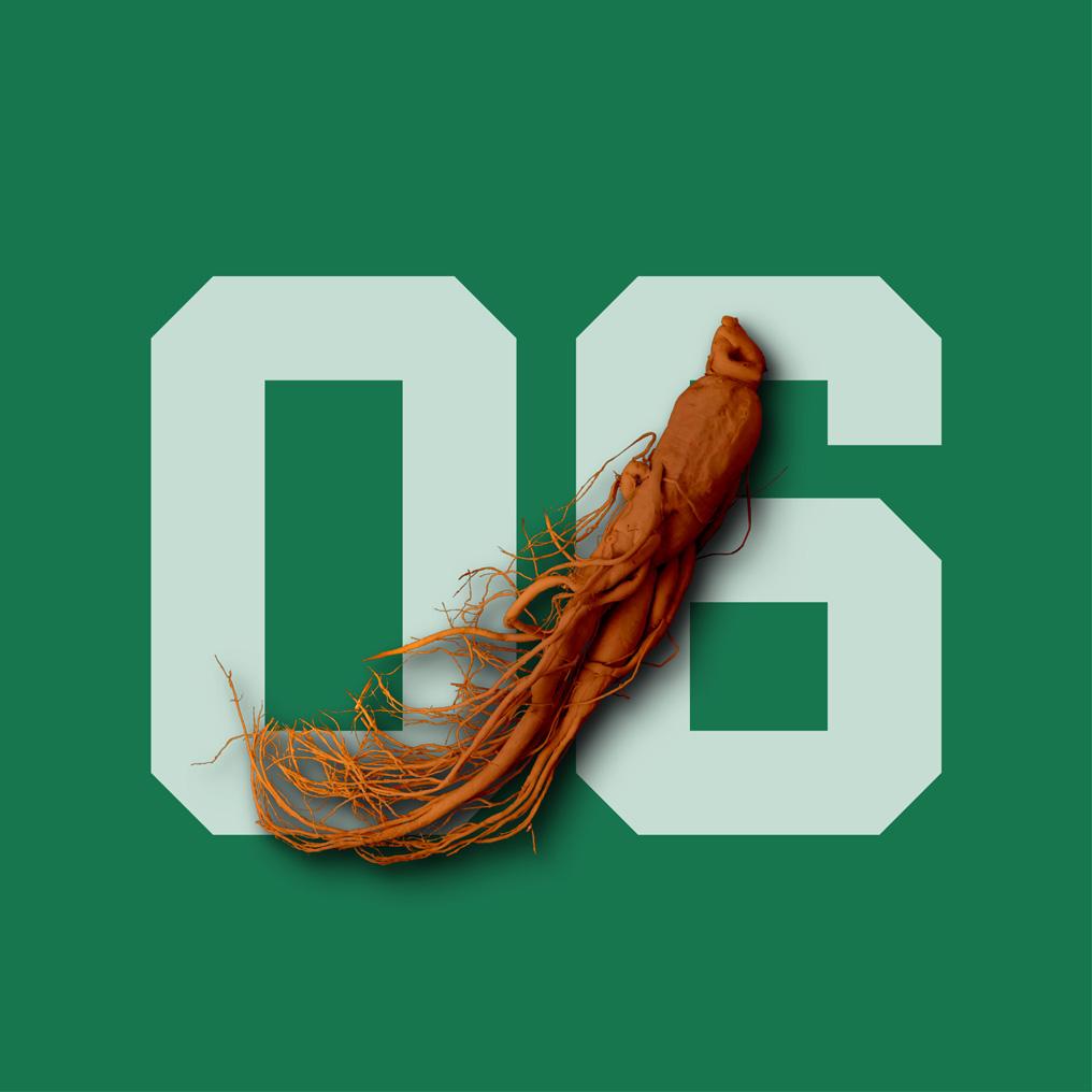 06-red-ginseng